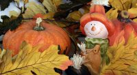 Our school will gather in the gym and participate in our annual school wide Pumpkin Walk around the neighbourhood dressed in orange and black on Wednesday, October 30th at approximately […]